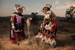 Hecho en Michoacán: los artistas en activo